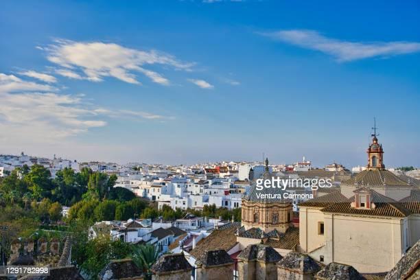skyline of carmona (prov. sevilla, spain) - carmona fotografías e imágenes de stock