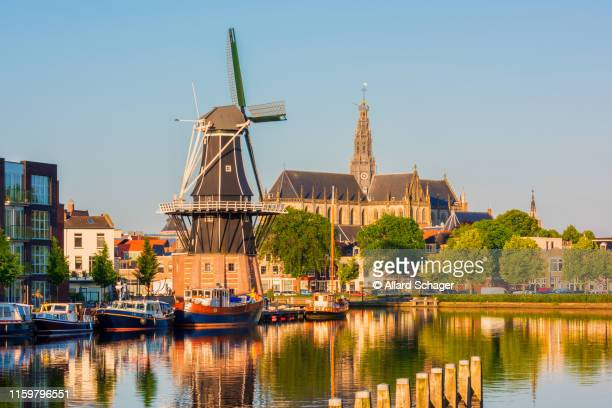 skyline of haarlem netherlands - haarlem stock photos and pictures