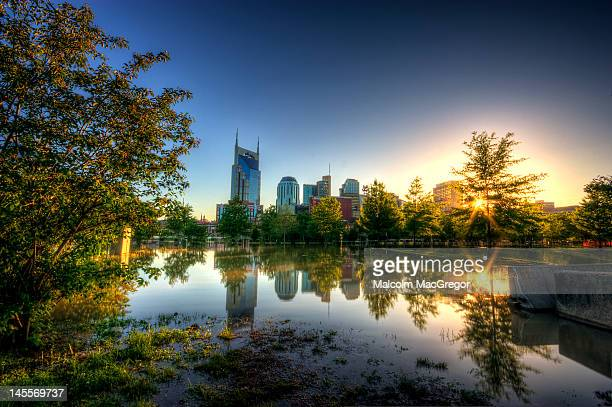 skyline of nashville - tennessee stock pictures, royalty-free photos & images