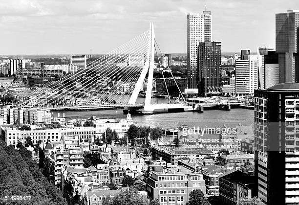 Skyline of Rotterdam the Netherlands