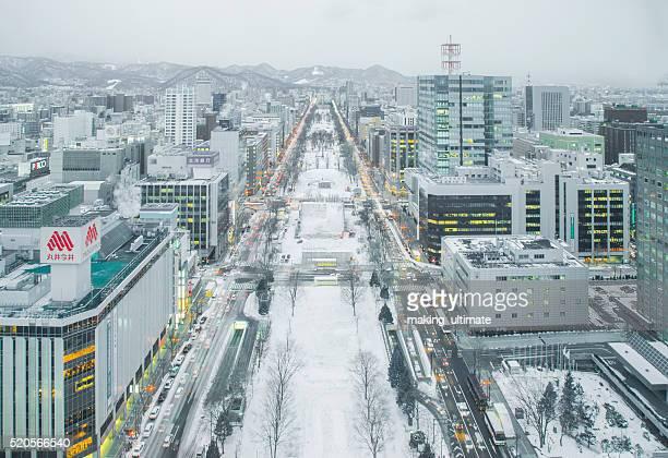 Skyline of Sapporo city