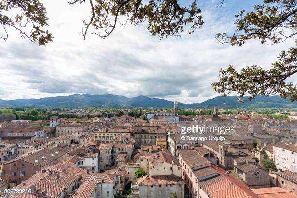 Skyline of the city of Lucca