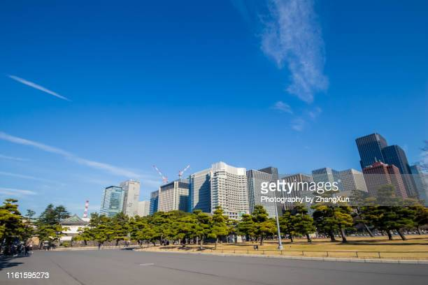 skyline of the imperial gardend at day time. - 丸の内 ストックフォトと画像