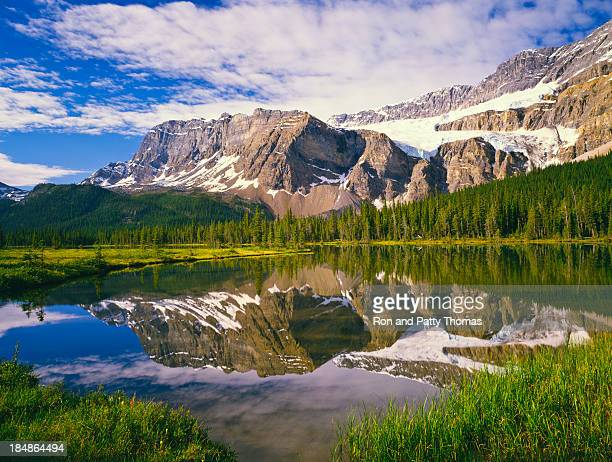 skyline picture of the canadian rockies - canadian rockies stock pictures, royalty-free photos & images