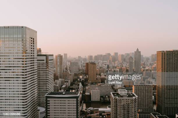 Skyline view of Tokyo at sunset