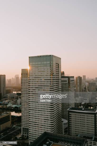 Skyline view of Tokyo city at sunset