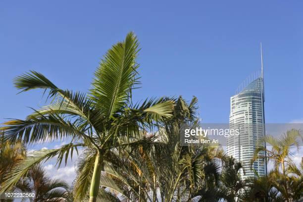 Q1 Skyscraper Building Gold Coast Queensland Australia