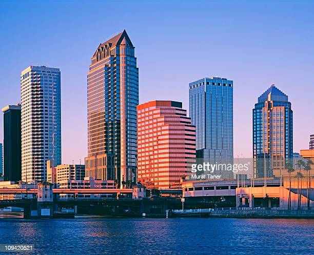 skyscrapers at dusk - tampa stock pictures, royalty-free photos & images