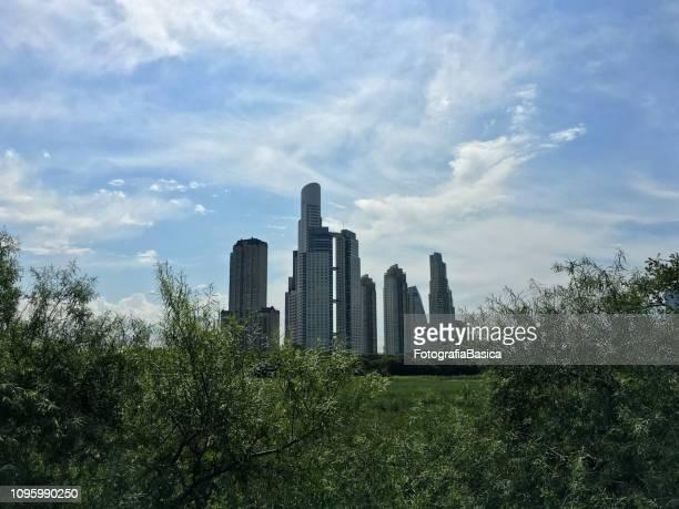 Skyscrapers between nature