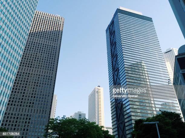 Skyscrapers in Shinjuku Ward in the morning, Tokyo, Japan