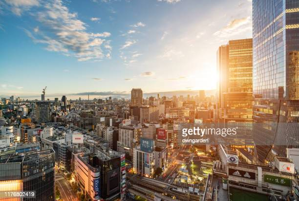 skyscrapers in tokyo in the morning - tokyo japan stock pictures, royalty-free photos & images