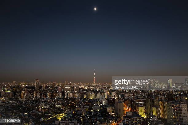 Skytree at Moonlight