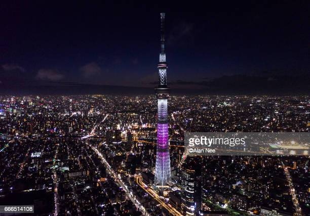skytree in pink sakura color - nee nee stock pictures, royalty-free photos & images