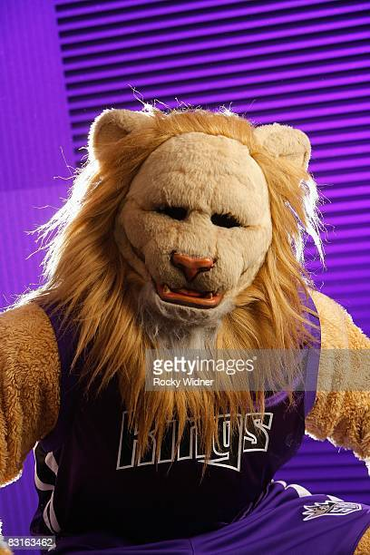 Slamson of the Sacramento Kings poses for a photo during Media Day on September 29 2008 at the Practice Facility in Sacramento California NOTE TO...