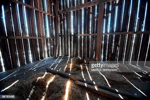 Slats of light and hay