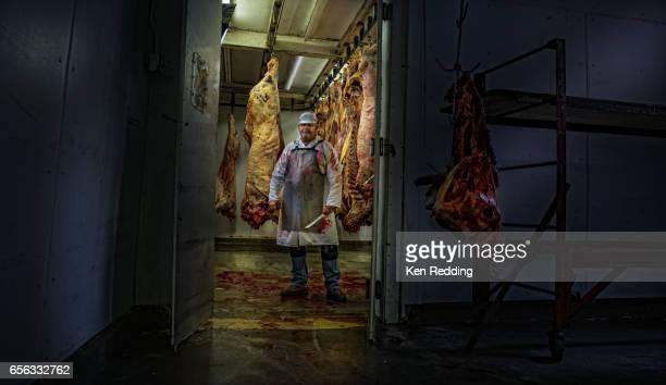 slaughter house butcher - 食肉処理場 ストックフォトと画像