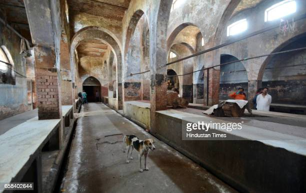 A slaughterhouse in the Qaiserbagh area wears a deserted look on March 26 2017 in Lucknow India Traders in Uttar Pradesh started an indefinite strike...