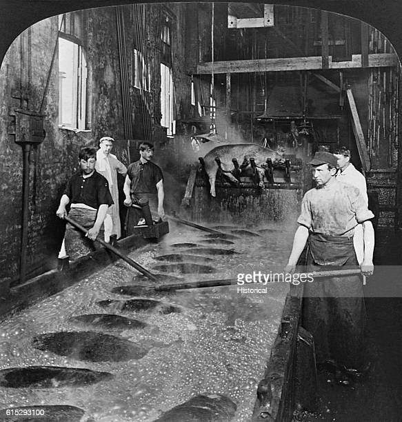 Slaughterhouse workers watch hogs scald in a large boiling vat preparatory to scraping One hog is lifted out of the vat by a mechanism at the end of...