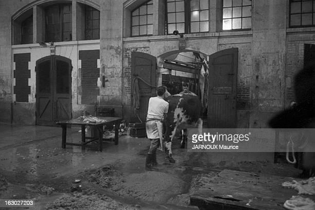 Slaughterhouses Of La Villete Paris
