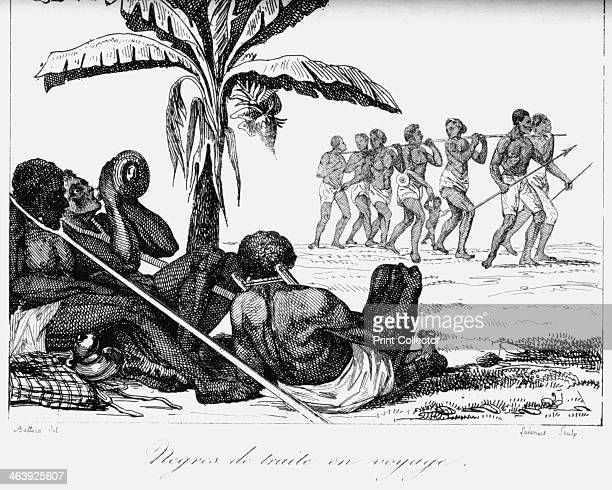 A slave convoy Africa 19th century Slaves tied together with slave forks around their necks on their way to slave ships