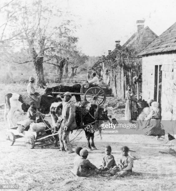 Slaves outside their Quarters on a Plantation in South Carolina circa 1865