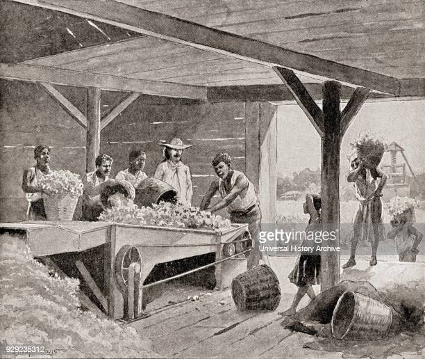 Slaves working with a 19th century cotton gin on a plantation in a southern state of the United States of America From The History of Our Country...