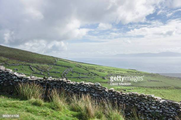slea head, dingle, ireland - stone wall stock pictures, royalty-free photos & images