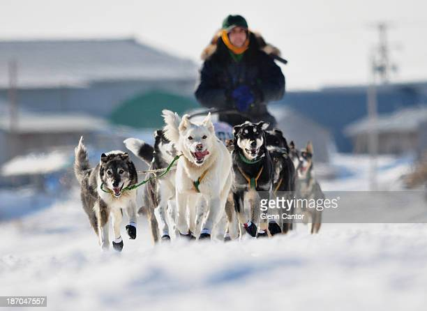 CONTENT] Sled dog team and musher leaving Unalakleet Alaska in the Iditarod Trail Sled Dog Race 2013 Unalakleet is a native village on the shore of...