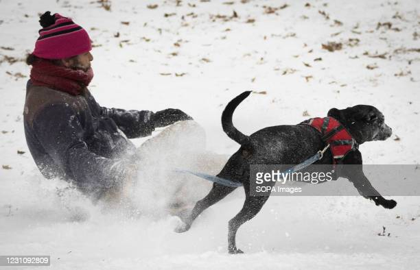 Sledder and a dog race down a hill at Reverend Ernest D. Butler Park on 9th Street.