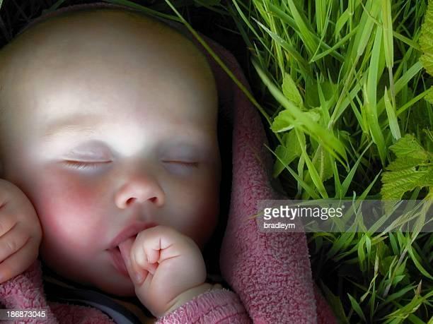 Bébé de trois chambres