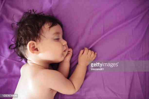 babies purple ストックフォトと画像 getty images