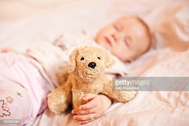 Sleeping baby girl with soft toy dog