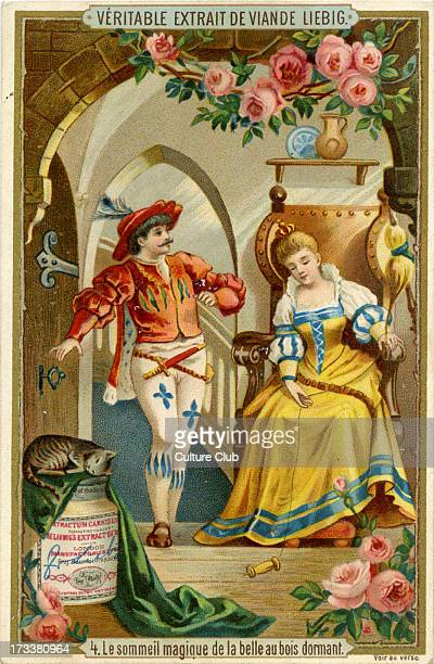 Sleeping Beauty Published 1892 Translation 'Sleeping Beauty's enchanted slumber' Liebig Company collectible cards series