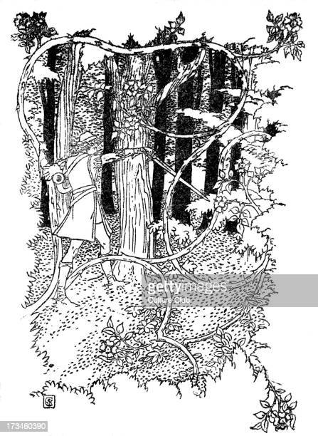 Sleeping Beauty written and illustrated by Walter Crane and published in 1914 The scene depicts the prince cutting his way through the thorn of woods...
