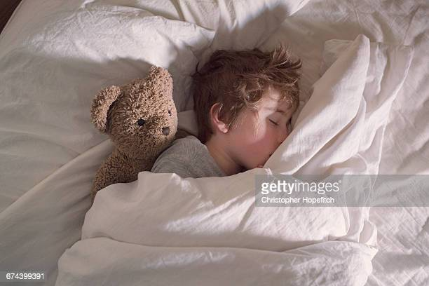sleeping boy with teddy bear - stuffed toy stock pictures, royalty-free photos & images