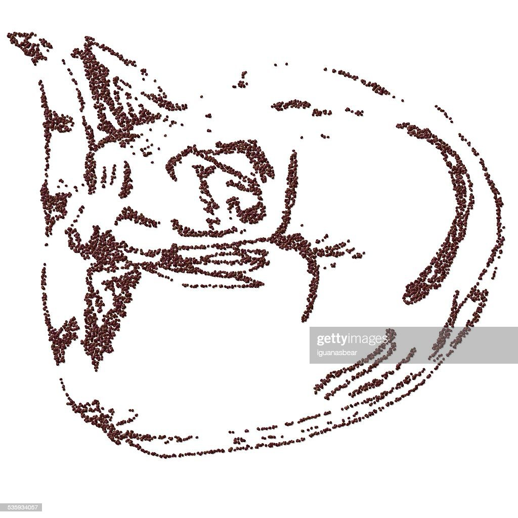 Sleeping cat curled up composed of coffee beans : Stock Photo