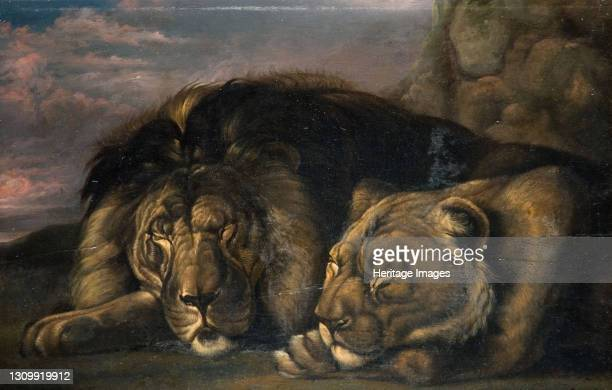 Sleeping Lion and Lioness 1823-1830. Artist Samuel Raven. .