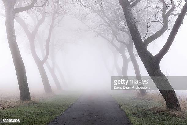 sleepy hollow - chesterton stock photos and pictures