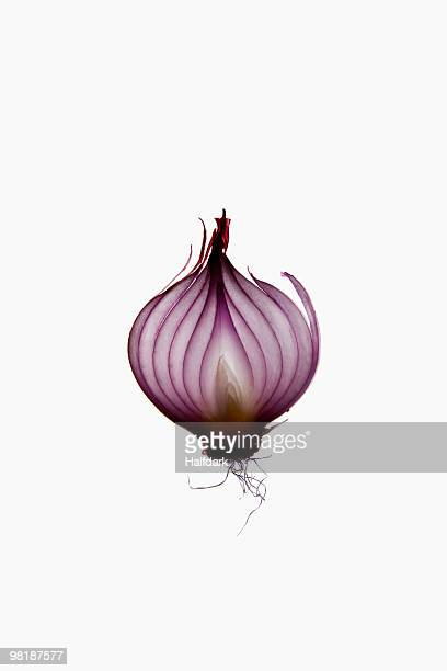 A slice of an organic red onion on a lightbox