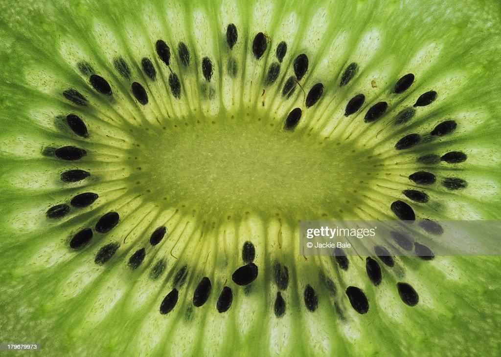 A slice of Kiwi fruit : Stock Photo