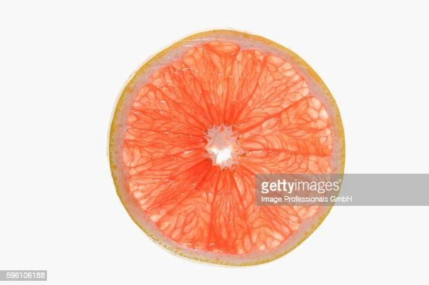 Slice of pink grapefruit (backlit)