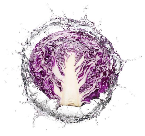 Slice of purple cabbage Splash