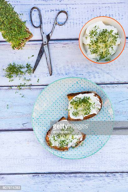 Slice of toasted bread with organic curd and cress