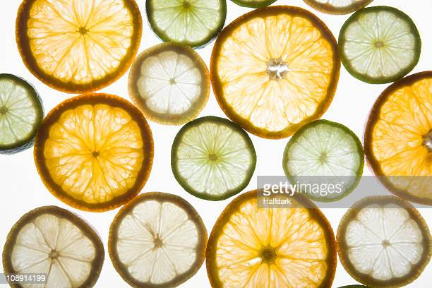 Sliced citrus fruits on a lightbox
