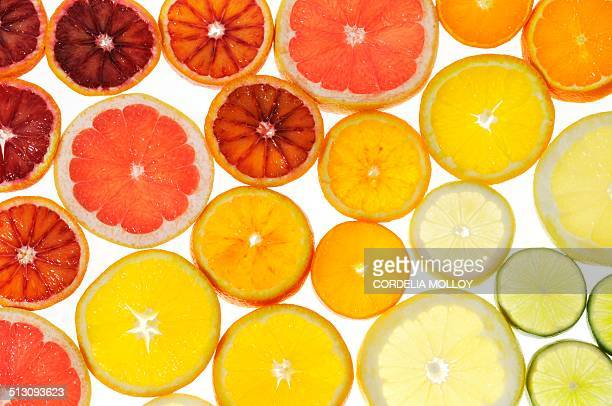 slices of citrus fruit - citrus fruit stock pictures, royalty-free photos & images