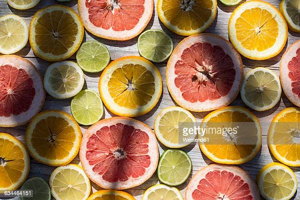 Slices of different citrus fruits