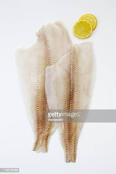 slices of fresh halibut fish filet with lime, close up - fillet stock pictures, royalty-free photos & images
