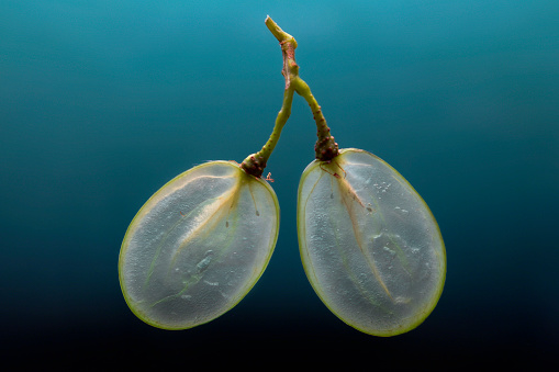slices of grapes - gettyimageskorea