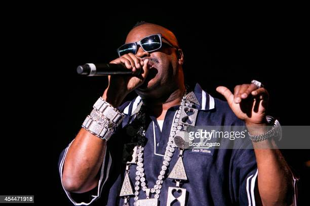 Slick Rick performs at DTE Energy Center on August 31 2014 in Clarkston Michigan