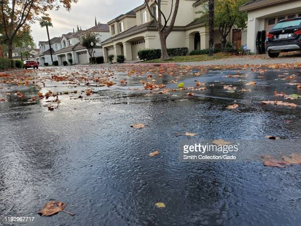 Slick roads with wet leaves during the first major rainstorm of the 2019-2020 rainy season in the San Francisco Bay Area, San Ramon, California,...